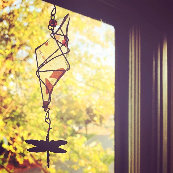 Window, Autumn, Fall, Dragonfly, Sunshine