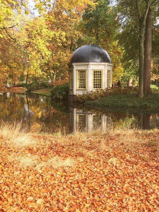 Autumn, Fall Colors, Colorful, Nature, Bright