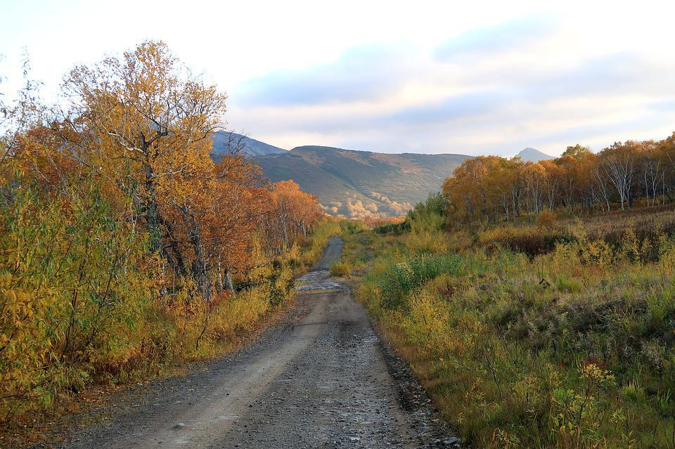 Autumn, Mountains, Forest, Road, Fall Colors