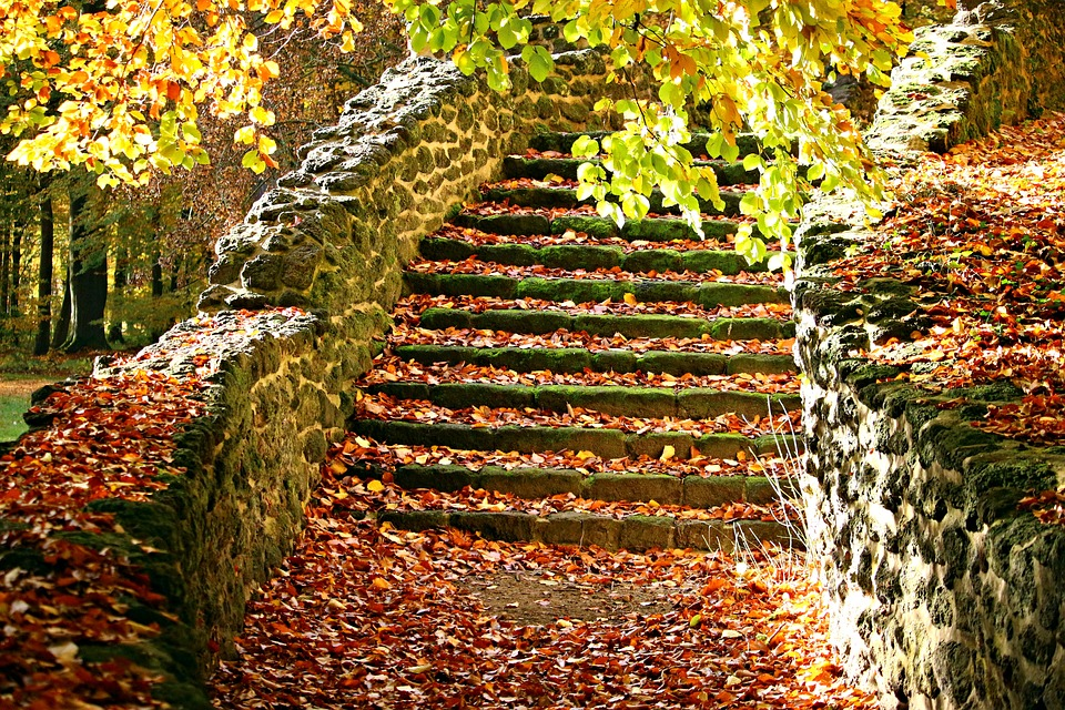 Autumn Stairs Fall Foliage Stair Step Castle Park