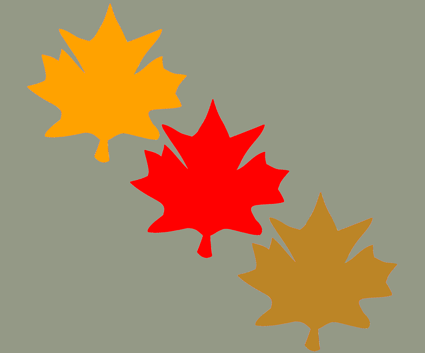 Fall Leaves, Leaves, Fall Leaves Background, Autumn