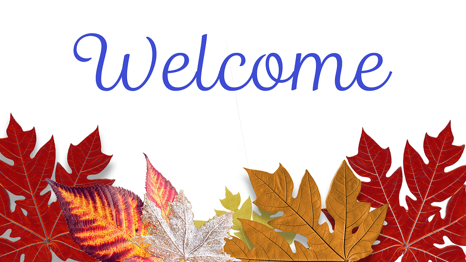 Fall, Leaves, Autumn, Fall Leaves Background