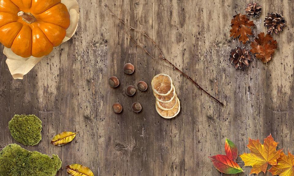 Autumn, Fall, Leaves, Mood, Season, Colorful, Leaf