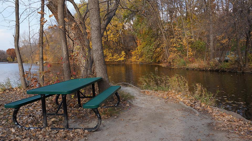 Fall, Campsite, Three Rivers, Maple Grove