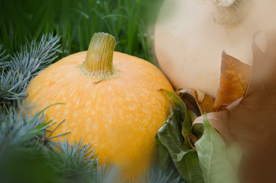 Vegetables, Pumpkin, Orange, Food, Fall, Halloween