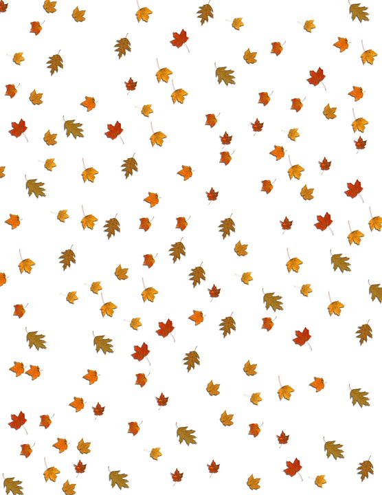 free photo falling fall leaves background max pixel