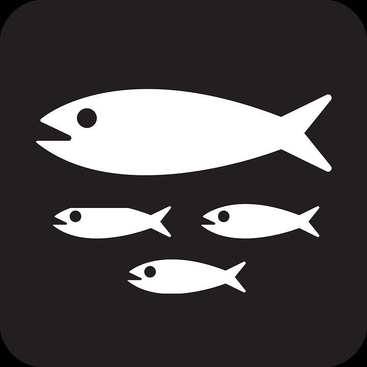 Fish, Family, Animals, Nemo, Black, Symbol, Sign, Icon