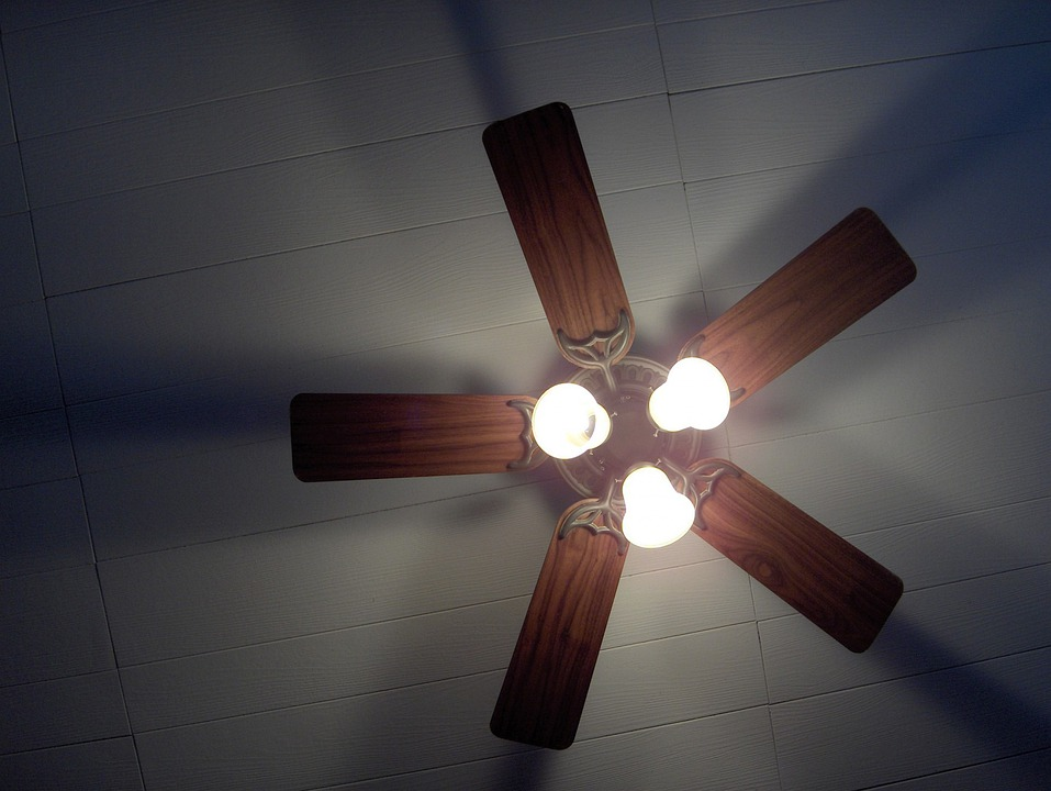 House, Panel, Ceiling, Fan, Light, Lighting