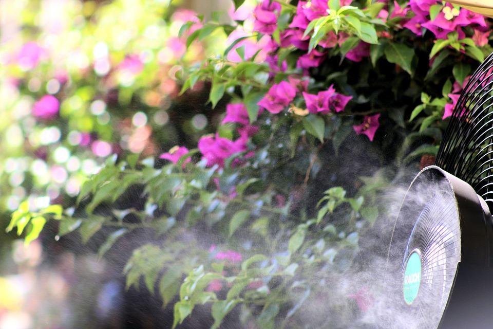 Flowers, Color, Pink, Fan, Summer, Cooling, Wind