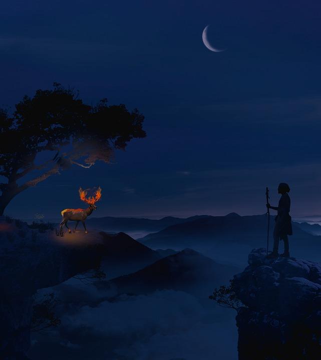 Surreal, Manipulation, Dream, Fantasy, Deer, Night