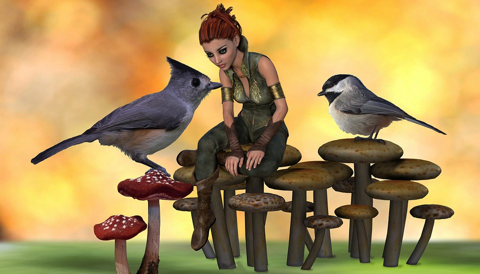 Macro World, Fantasy, Birds, Tufted Titmouse, Chickadee