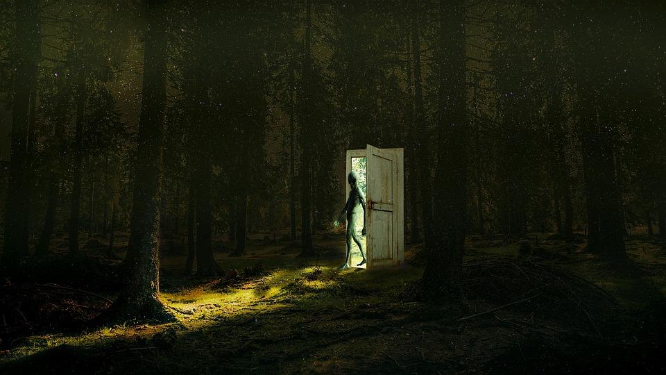 Free Photo Fantasy Mysterious Spooky Outdoors Dark Mystery