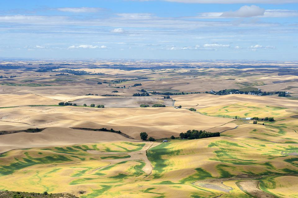 Farm, Agriculture, Farming, Countryside, Rural, Nature