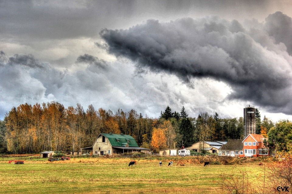 Menacing, Farm, Sky, Clouds, Outdoors, Scenic, Tranquil