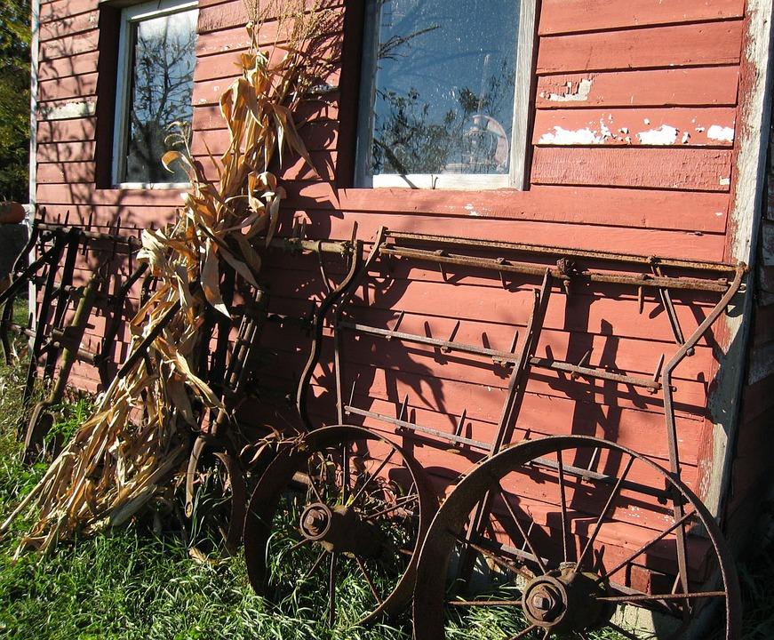 Farm, Country, Corn, Stalks, Wagon, Wheels, Shed