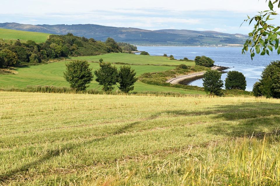 Field, Farm, Countryside, River, Scotland, Trees
