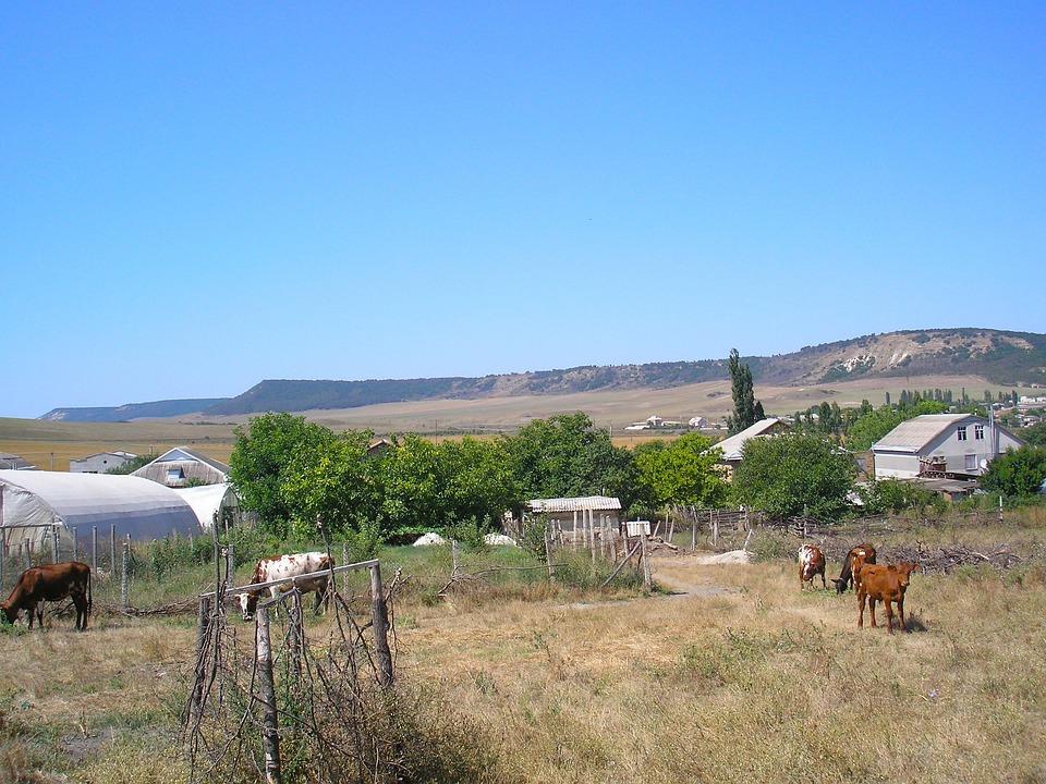 Crimea, Sky, Clouds, Farm, Rural, Cattle, Barn, House