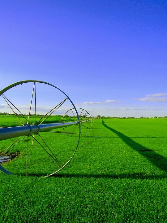 Field, Farm, Color, Farm Field, Rural, Landscape