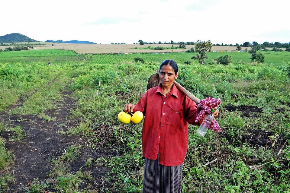 Farm Lady, Female, Worker, Farm, Hoe, Carrying