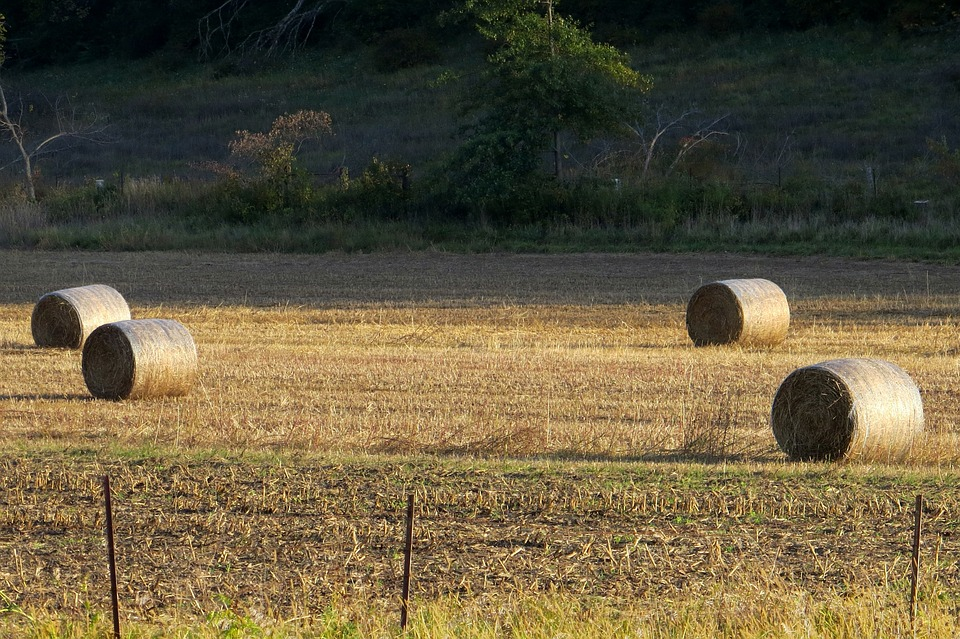 Hay, Farm, Iowa, Rural, Bale