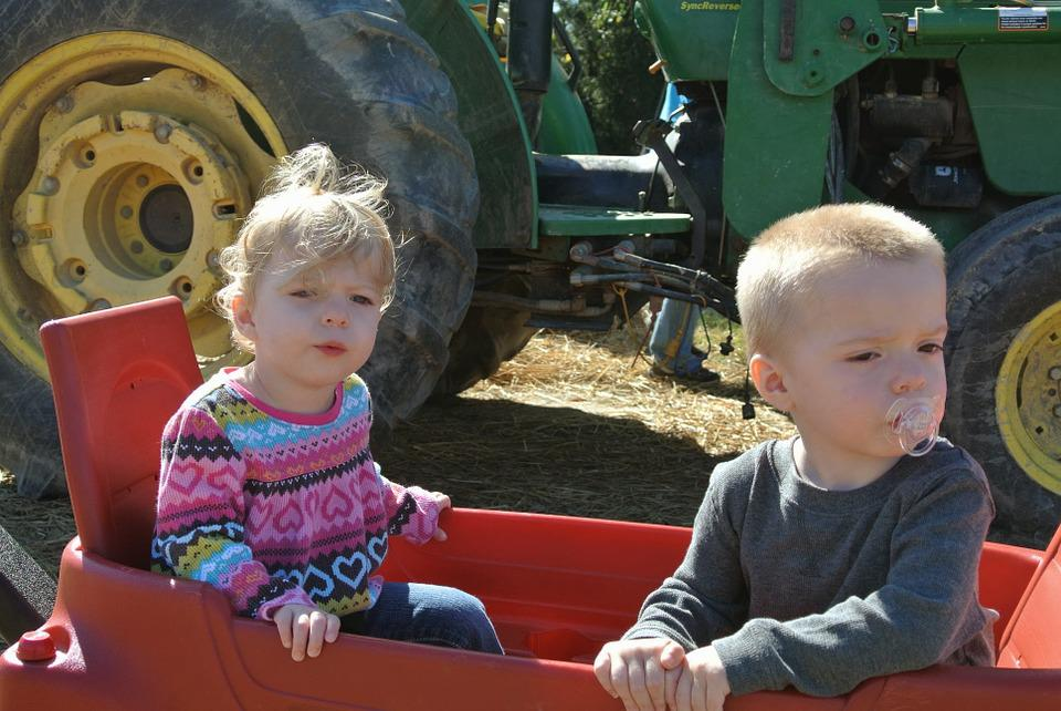 Farm, Kids, Tractor, Country, Children, Rural, Harvest