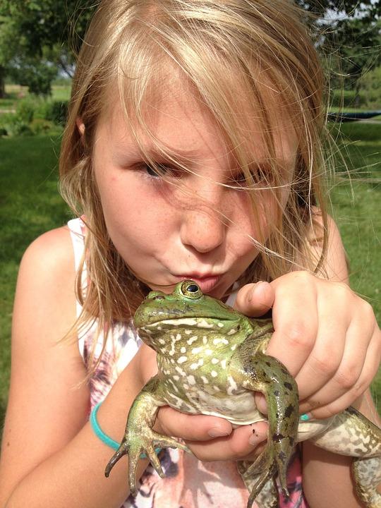 Girl, Kiss, Kissing, Farm, Frog