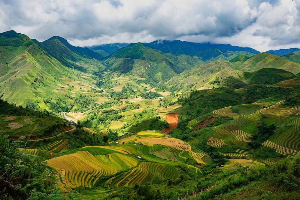 Landscape, Terraces, Rice Terraces, Farm, Cropland