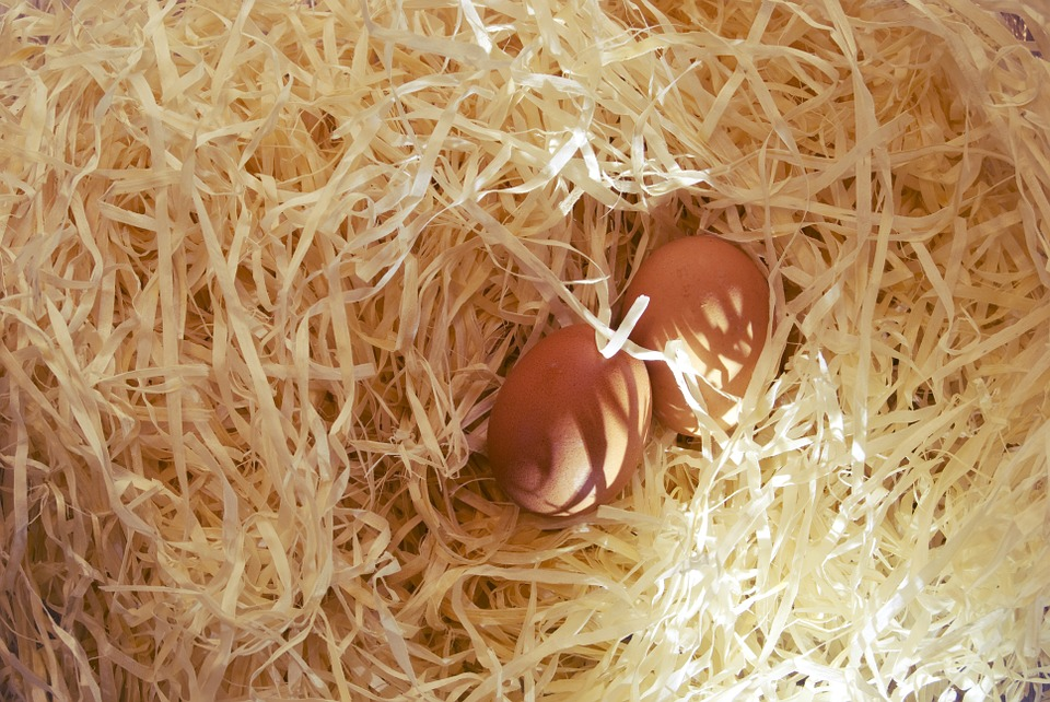 Eggs, Brown, Straw, Protein, Easter, Food, Farm