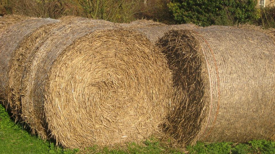 Hay Bales, Summer, Countryside, Rural, Farm