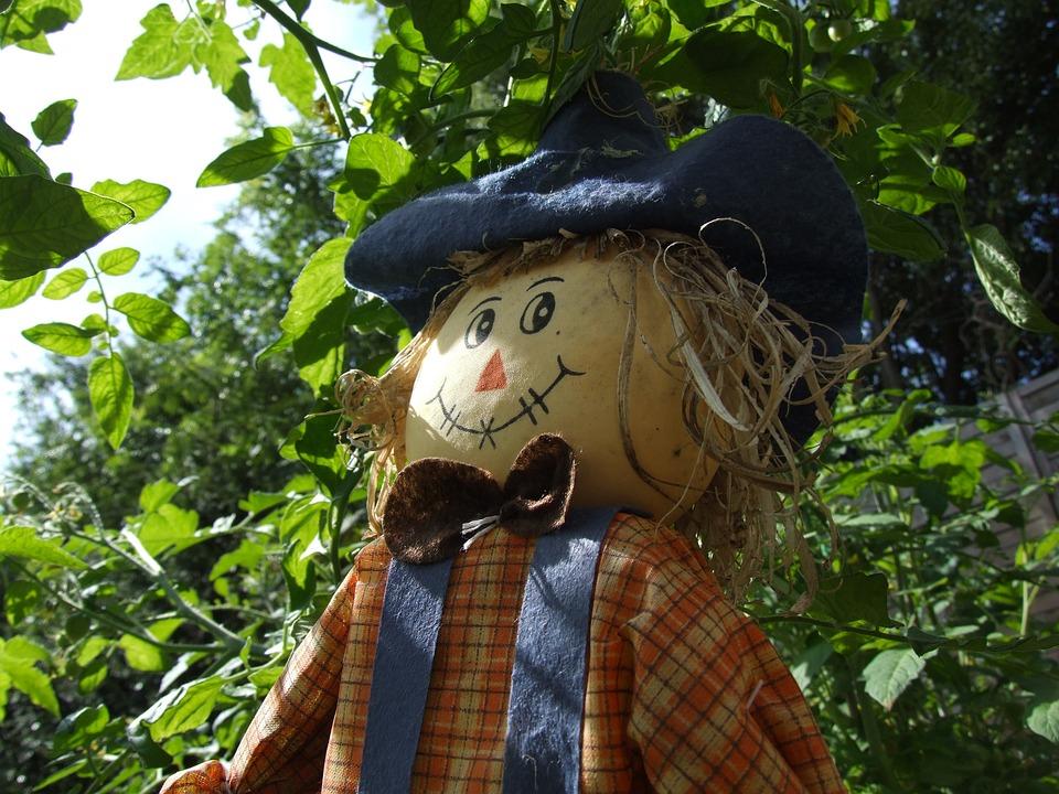 Scarecrow, Garden, Farm, Nature, Agriculture, Rural