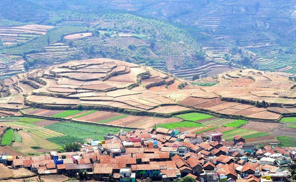 Rice Terraces, Terraced, Cultivation, Terrace, Farm