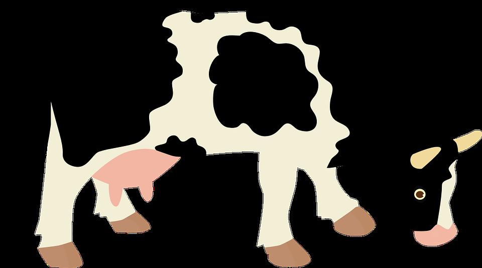 Cow, Milk, Tur, Economy, Animal, Home, Dairy Cow, Farm