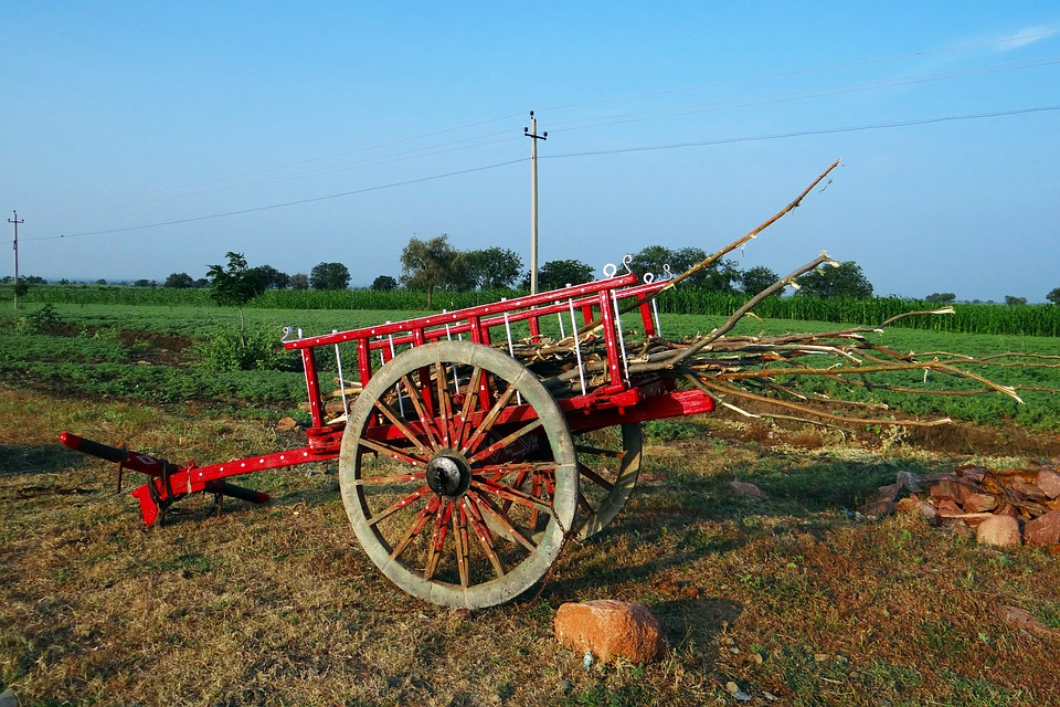 Cart, Colorful, Farm Utility, Ilkal, Highway Side