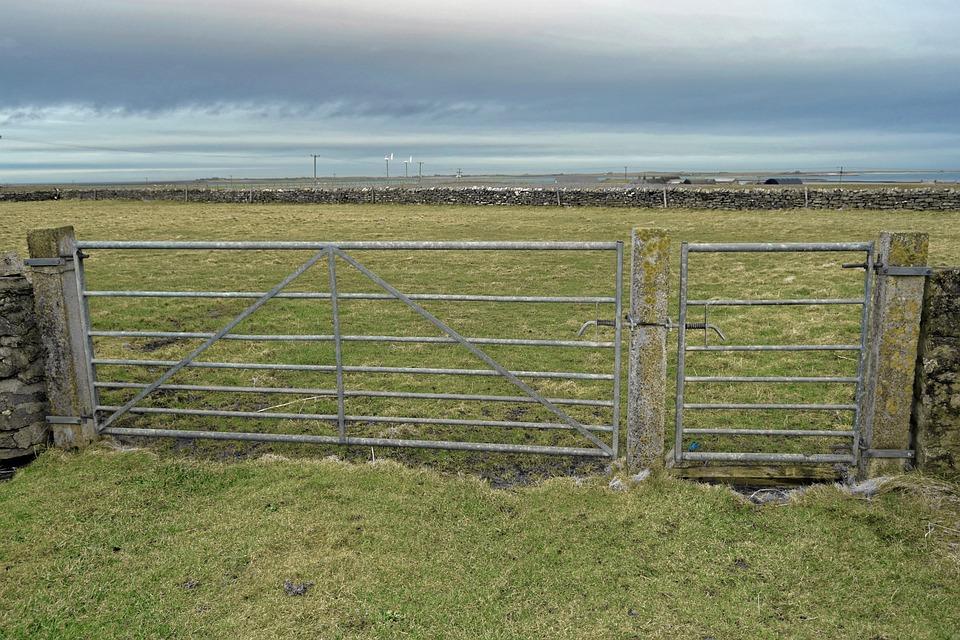 Farm, Gate, Metal Gate, Farmland, Field, Wall, Sky