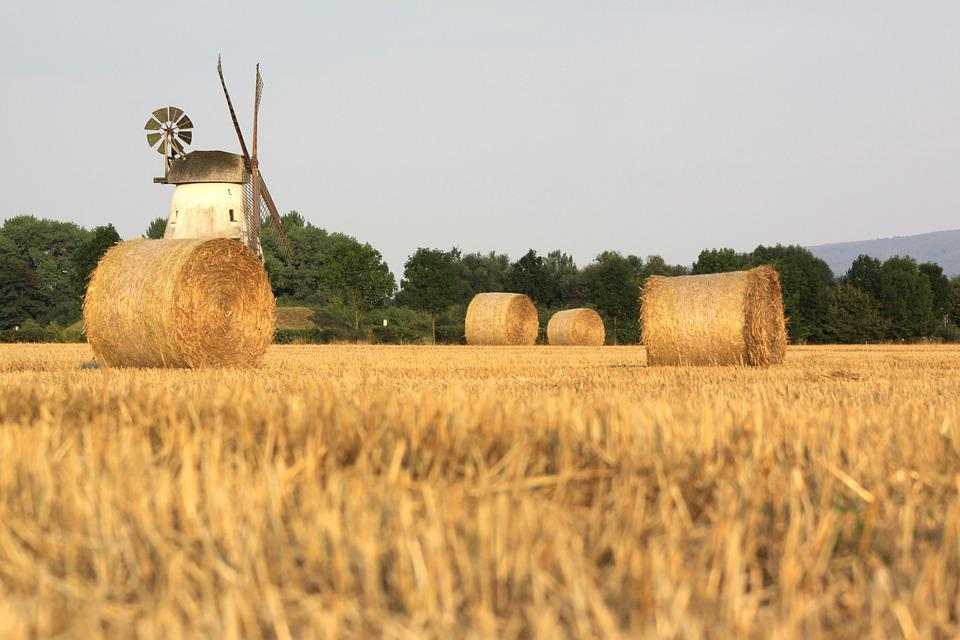 Farm, Agriculture, Sky, Windmill, Field, Harvest