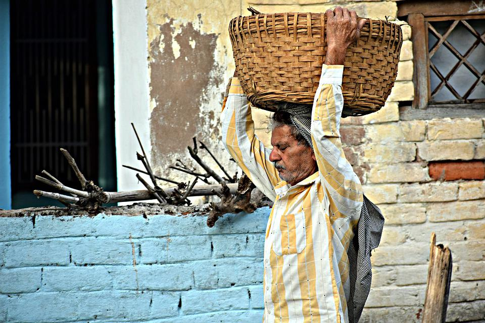 Farmer, Load, Rural, Agricultural, Operation