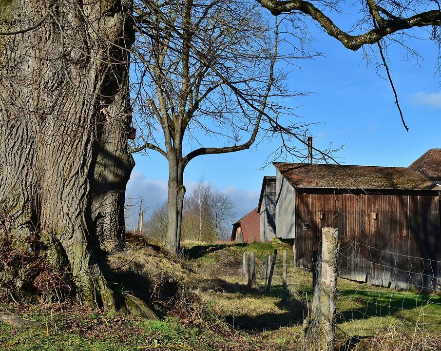 Landscape, Farm, Building, Rural, Farmhouse, Winter