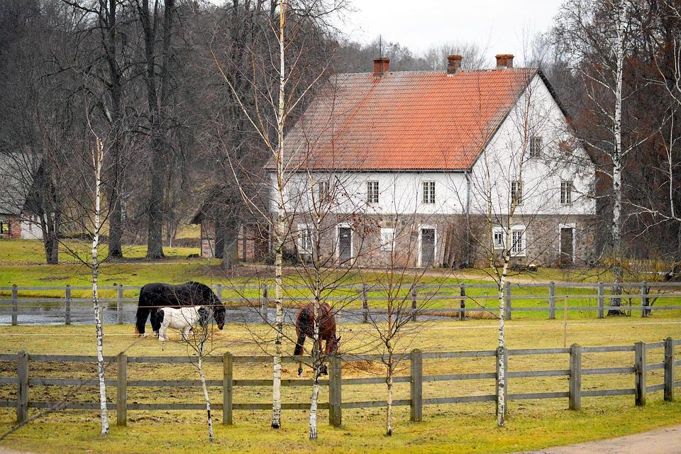 Farm, Farmhouse, Horses, Pen, Country, Countryside