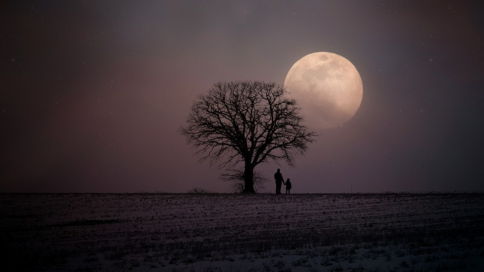 Winter, Wintry, Moon, Human, Father And Child, Lonely