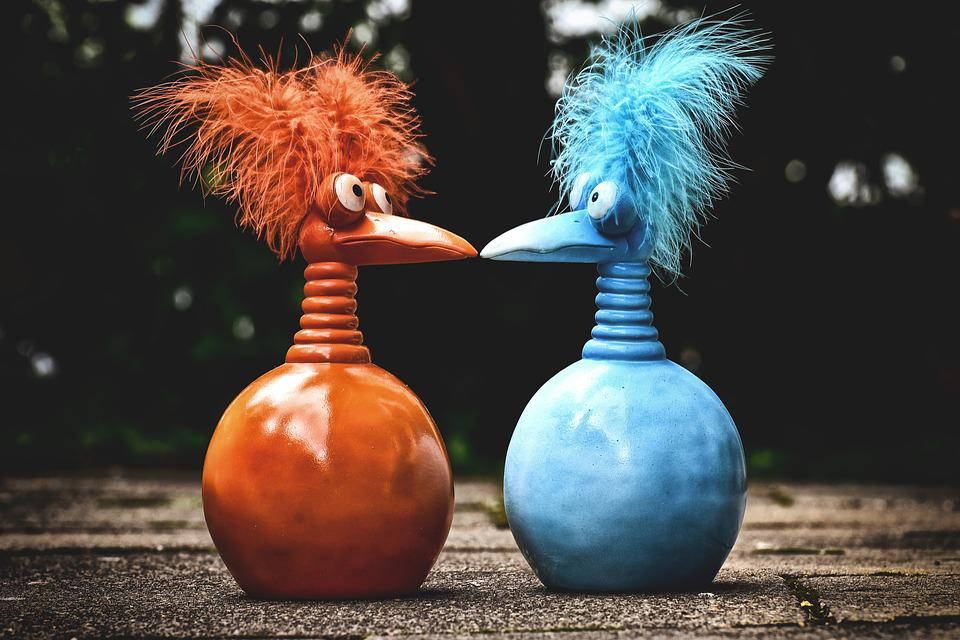Jokers, Orange, Blue, Funny, Weird Bird, Cute, Feather