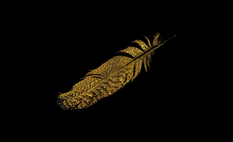 Ornament, Feather, Bird, Nature, Bird Feather