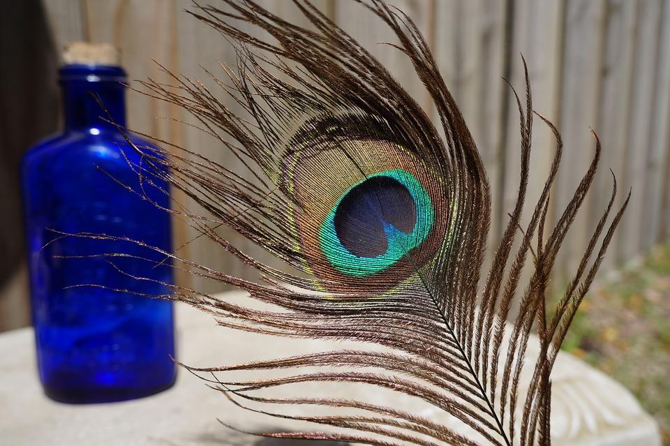 Feather, Color, Beautiful, Desktop, Peacock, Pattern