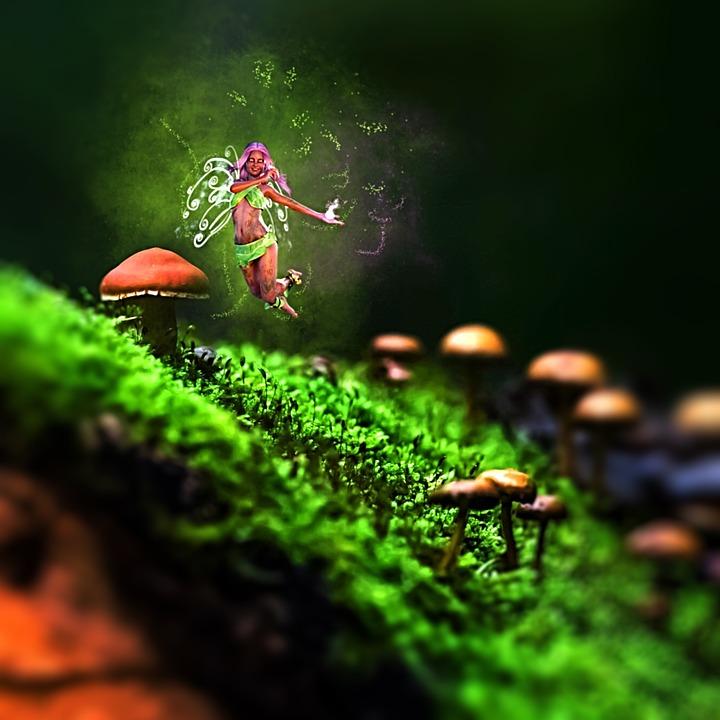 Fee, Mushrooms, Nature, Fairytale, Elf, Wing, Woman