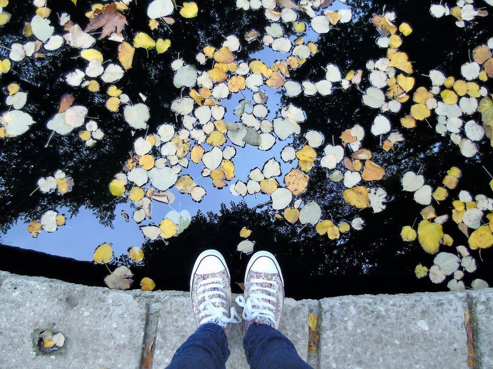 Feet, Autumn, Lawn, Pond, Travel, Traveller