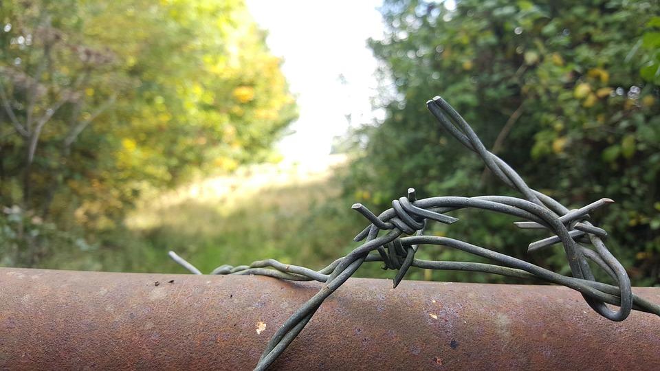 Barbwire, Fence, Fields