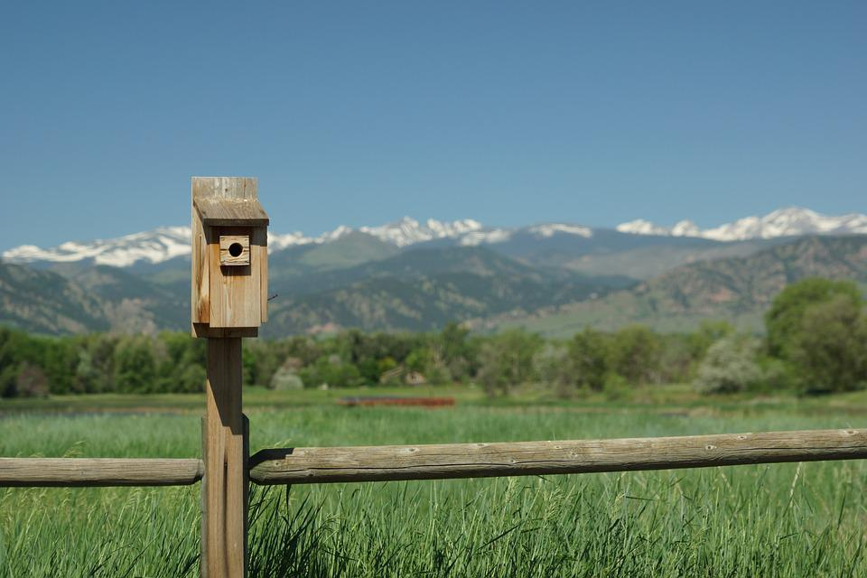 Mountain, Vista, Birdhouse, Bird, Fence, Colorado