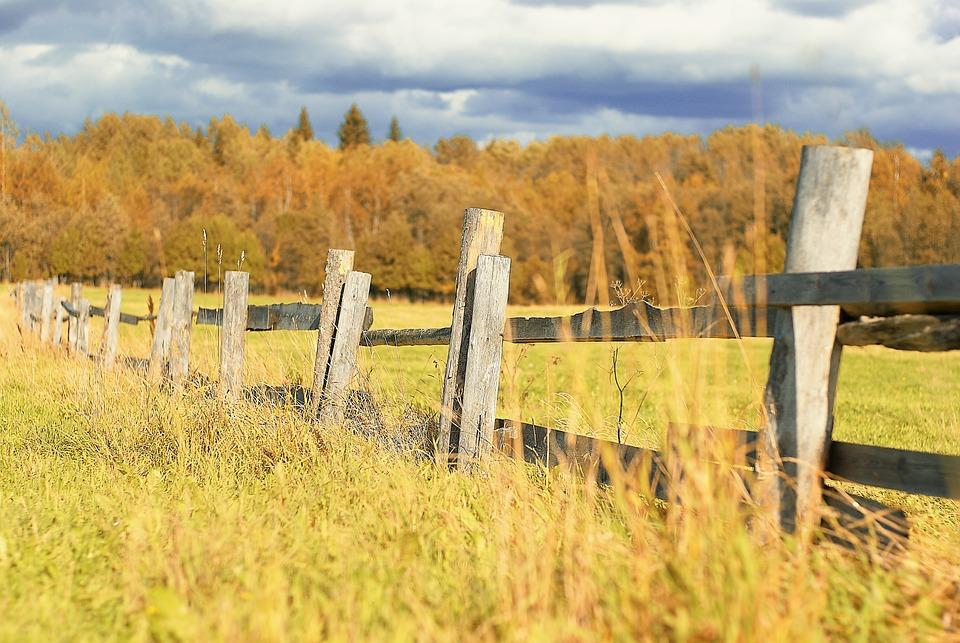 Field, Fence, Grass, Clouds, Sky, Nature, Autumn