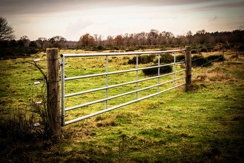 Goal, Gate, Fence, Pasture, Meadow, Metal, Door