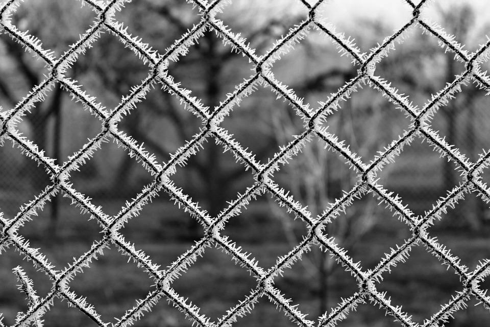Fence, Ice, Frost, Winter, Frozen Wall