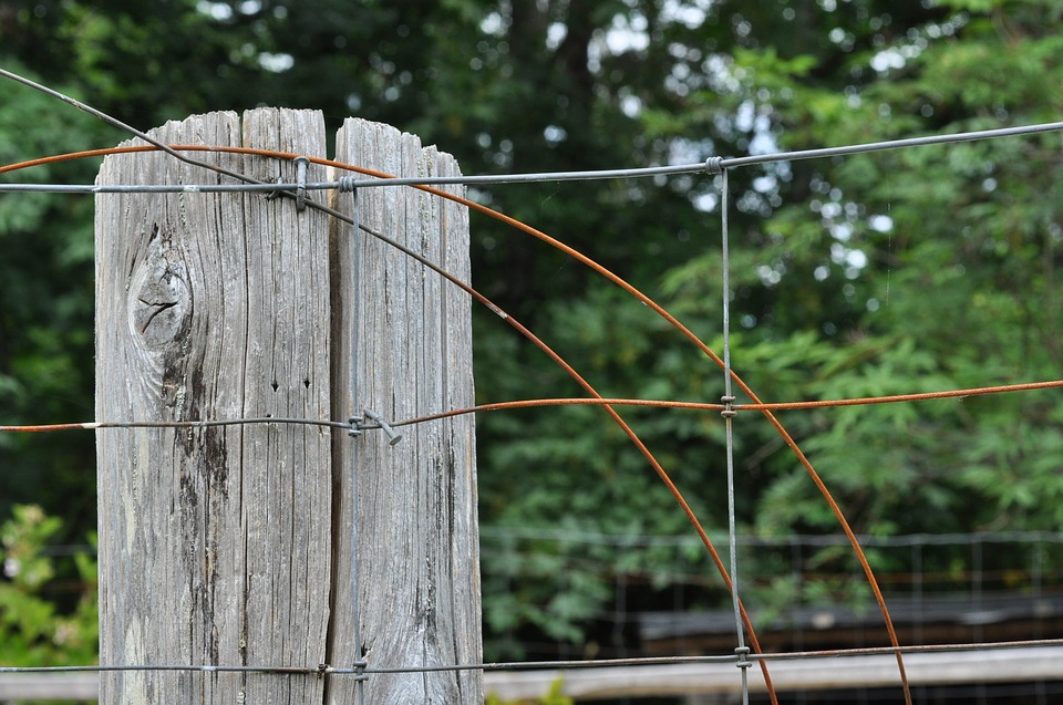 Wood, Fence, Fencing, Wooden, Farm, Post, Rough, Rustic